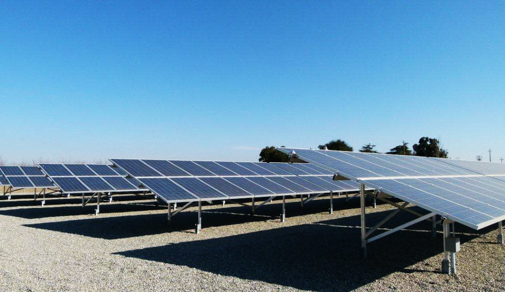 Solar Panels in Almond Orchard